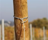 Showing GPAK's wire rope secured to wooden end post